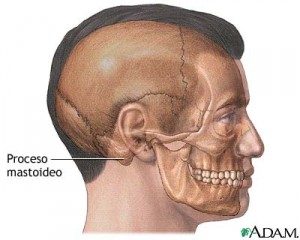 Mastoidectomia-300x240.jpg